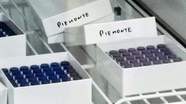 covid vaccino scatole piemonte