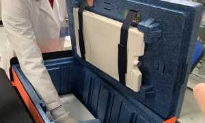 vaccino scatola refrigerata